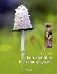 Bien identifier les champignons : le guide