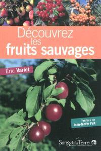 Découvrez les fruits sauvages : comestibles et toxiques