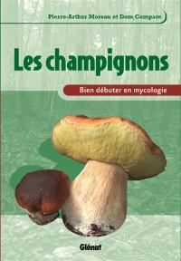 Les champignons : bien débuter en mycologie
