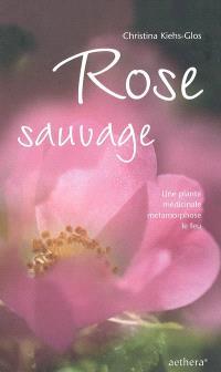 Rose sauvage : une plante médicinale métamorphose le feu