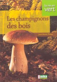 Les champignons des bois