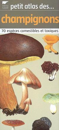 Petit atlas des champignons : 70 espèces comestibles et toxiques