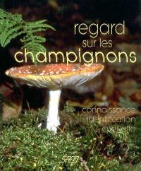 Regard sur les champignons : connaissance, identification, cueillette