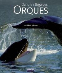 Dans le sillage des orques