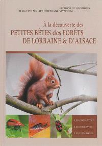 A la découverte des petites bêtes des forêts de Lorraine & d'Alsace