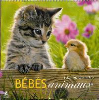 Bébés animaux : calendrier 2017