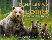 Dans les pas de l'ours : de Cannelle à Paddington