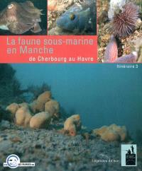 La faune sous-marine en Manche : de Cherbourg au Havre