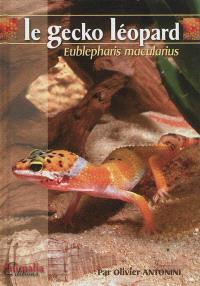 Le gecko léopard : Eublepharis macularius