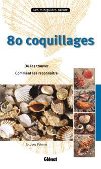80 coquillages : où les trouver, comment les reconnaître