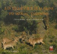 A la découverte de la faune du Maroc oriental : itinéraires d'un naturaliste