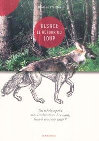 Alsace, le retour du loup : un siècle après son éradication il revient, faut-il en avoir peur ?