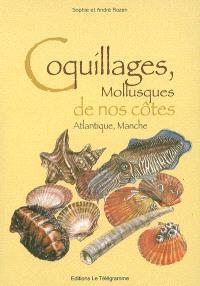 Coquillages, mollusques de nos côtes : Atlantique, Manche