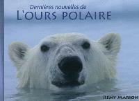 Dernières nouvelles de l'ours polaire