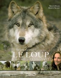 Le loup : sauvage et fascinant
