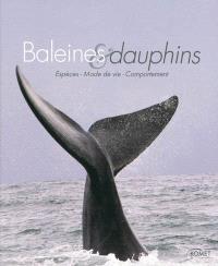 Baleines & dauphins