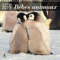 Bébés animaux : calendrier 2015