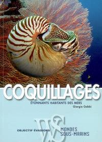 Coquillages : étonnants habitants des mers