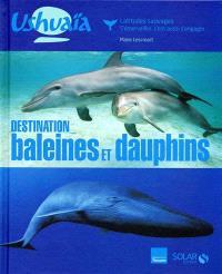 Destination baleines et dauphins