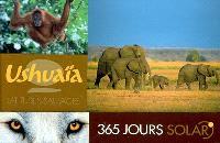 Latitudes sauvages : 365 jours Ushuaïa