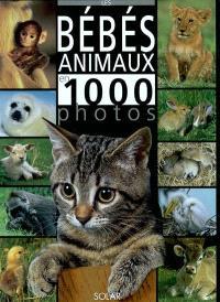 Les bébés animaux en 1.000 photos