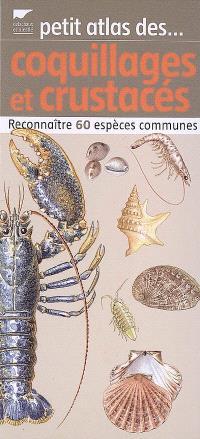 Petit atlas des coquillages et crustacés : reconnaître 60 espèces communes