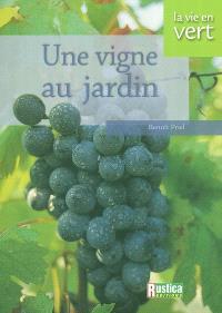 Une vigne au jardin