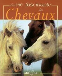 La vie fascinante des chevaux