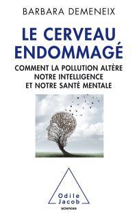 Le cerveau endommagé : comment la pollution altère notre intelligence et notre santé mentale