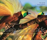 Oiseaux de paradis : les oiseaux les plus extraordinaires du monde