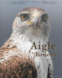 Aigle de Bonelli : méditerranéen méconnu