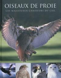Oiseaux de proie : ces majestueux chasseurs du ciel