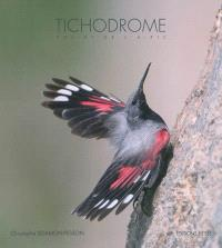 L'oiseau papillon : la vie incroyable du tichodrome : film