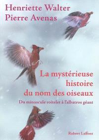 La mystérieuse histoire du nom des oiseaux : du minuscule roitelet à l'albatros géant