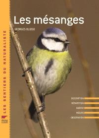 Les mésanges : description, répartition, habitat, moeurs, observation