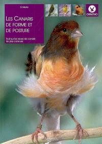 Les canaris de forme et de posture : tout sur les races de canaris les plus connues