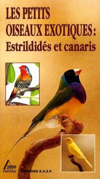 Les petits oiseaux exotiques : estrildidés et canaris