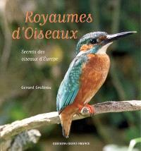 Royaumes d'oiseaux