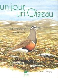 Un jour, un oiseau : mille croquis de terrain