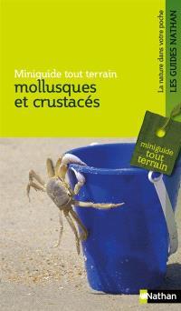 Mollusques et crustacés : la pêche à pied