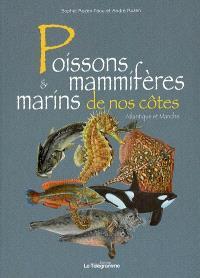 Poissons & mammifères marins de nos côtes : Atlantique et Manche
