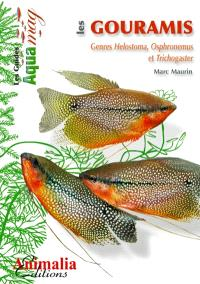 Les gouramis : genres helostoma, osphronemus et trichogaster