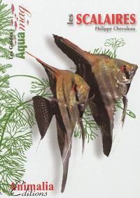 Les scalaires : le genre Pterophyllum
