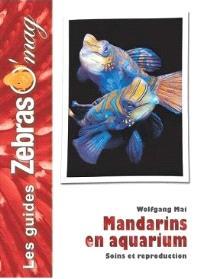 Mandarins en aquarium : soins et reproduction
