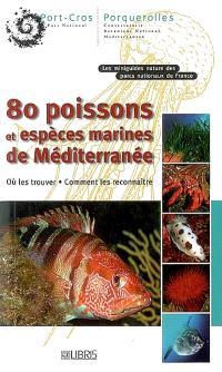 80 poissons et espèces marines de Méditerranée : où les trouver, comment les reconnaître