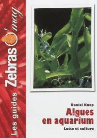 Algues en aquarium marin : les cultiver et les combattre