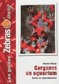 Gorgones : maintenance et reproduction en aquarium
