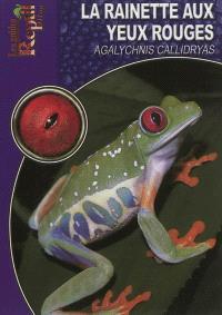 La rainette aux yeux rouges : Agalychnis callidryas