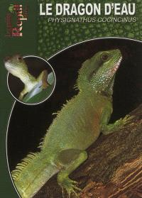 Le dragon d'eau : Physignathus cocincinus