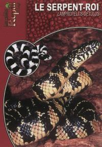 Le serpent-roi : Lampropeltis getula